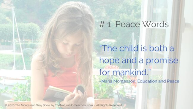 Practical Life: Fostering Peace the Montessori Way [Live Training] In this post, live training and podcast episode, I am going to give you 3 tips to: teach, model and grow peace in our lives the Montessori way. #montessoricurriculum3-6 #themontessoriway #practicallife #howtoexplainpeacetoachild