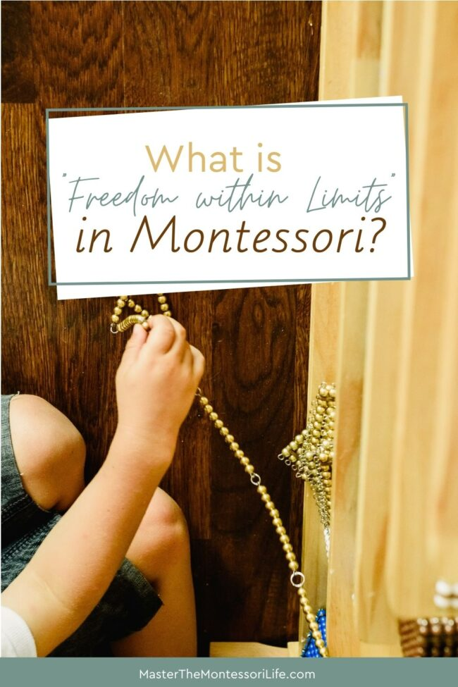 Freedom Within Limits' in the Montessori Environment Come and find out how freedom within limits works for discipline in children.