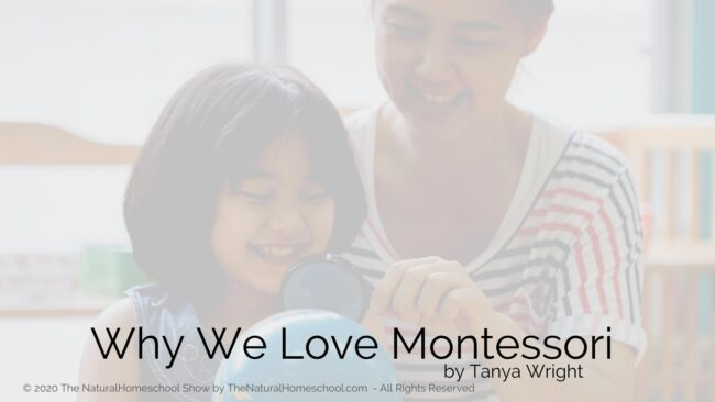 If you are new to the philosophy, you will fall in love with it and if you are a seasoned Montessorian, it will make you love it even more!
