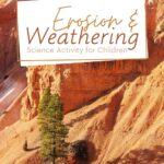 In this Science activity with detailed pictures, children will learn what erosion and weathering are, how to tell the difference between the two.