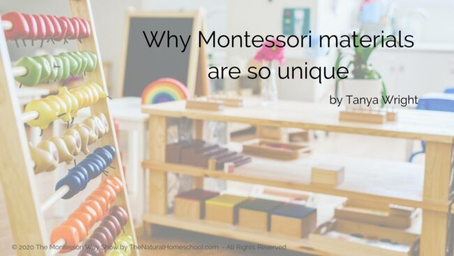 Here is the activity that will solve so much of your overwhelm whe it comes to combining Montessori subjects for multiple uses!