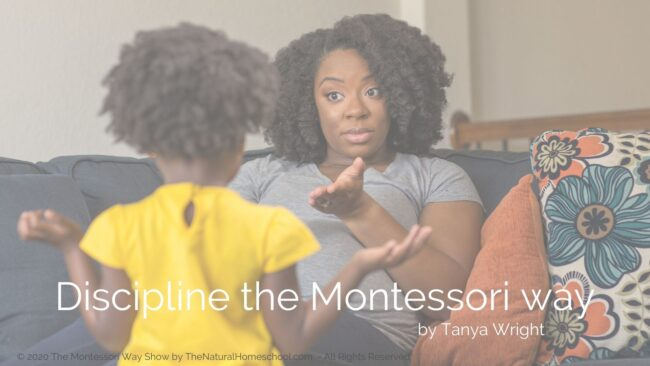 In this post, we'll delve a little deeper into the extremely important topic of instilling self-control in Montessori.