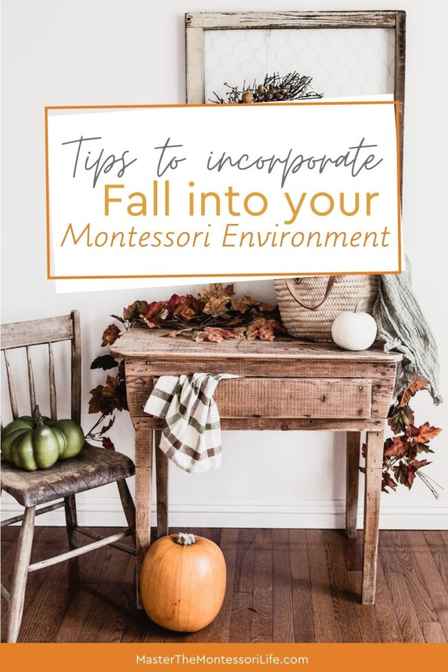 Come and find out how you can highlight and celebrate Fall in your Montessori environment without stressing out about it.